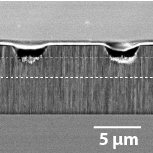 Porous silicon integrated Mach-Zehnder interferometer waveguide for biological and chemical sensing