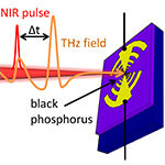 You are currently viewing Optical Gating of Black Phosphorus for Terahertz Detection
